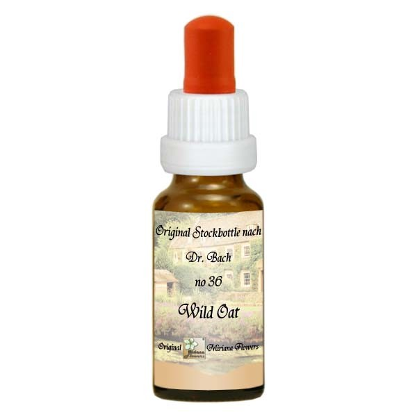 36 Wild Oat, 20ml Essenz, MirianaFlowers