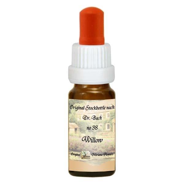 38 Willow, 10ml Essenz, MirianaFlowers