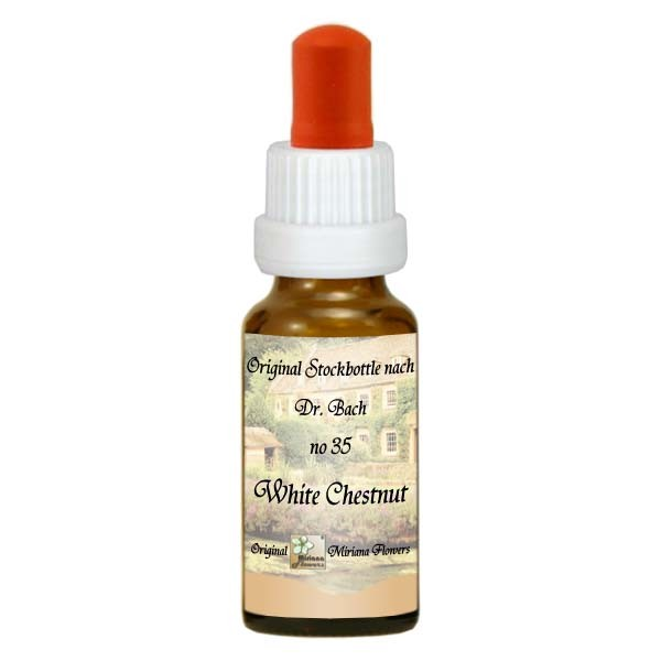 35 White Chestnut, 20ml Essenz, MirianaFlowers