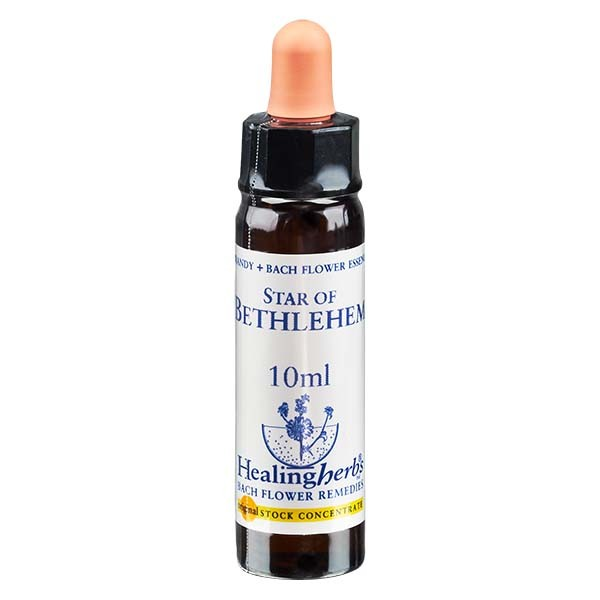 29 Star of Bethlehem, 10ml Essenz, Healing Herbs
